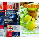 U prodaji novembarsko izdanje časopisa Dom Info