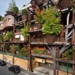 Urbana kućica na drvetu: Oko 150 stabala drveća štiti stanare od buke i zagađenja