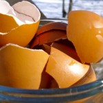 Saznajte kako vam ljuska od jajeta pomaže u kućanstvu