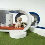 Kuća za pse vrijedna 30.000 dolara