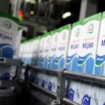 """Privremena obustava otkupa mlijeka od zadruge """"MK-kompani"""""""