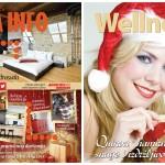 U prodaji dvobroj izdanje časopisa DOM INFO za januar/februar