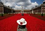 Posjetioce dočekuje instalacija dizajnera Phillipa Johnsona od 300 000 pletenih cvjetova maka kao simbol odavanja počasti vojnicima koji su učestvovali u ratovima, konfliktima i mirovnim operacijama u predhodnih 100 godinu