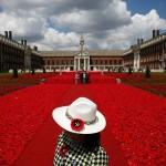 Pogledajte fotografije sa najpoznatijeg sajma cvijeća: Raskoš britanskih vrtova
