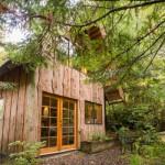 Šumska kućica u japanskom stilu: Kajakaš sam izgradio svoje mirno utočište u prirodi