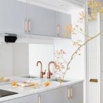 Kuhinje: Mala kvadratura, veliki stil