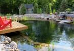 natural-swimming-pool_070616_02