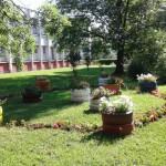 Izabrano najljepše dvorište u Banjaluci