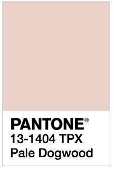 pantone-boje-trendovi-ya-2017