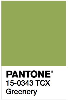 pantone-boje-za-2017-4png
