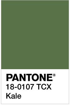 pantone boje za 2017