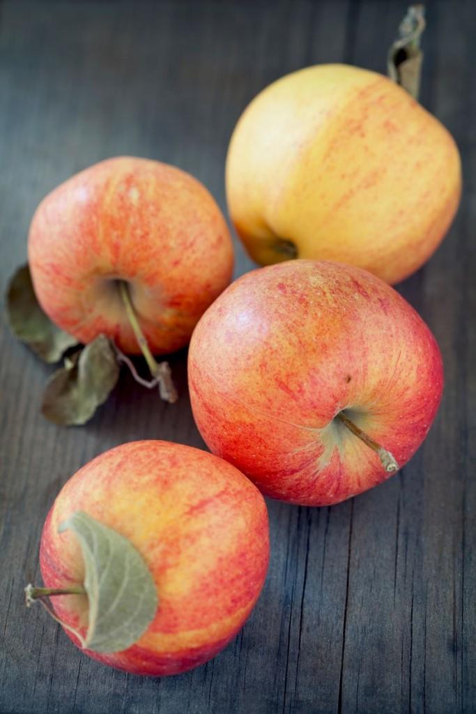 gravenstein-jabuka
