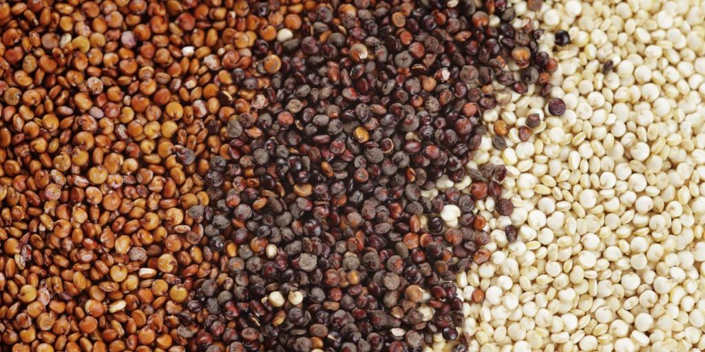vrste-kvinoje