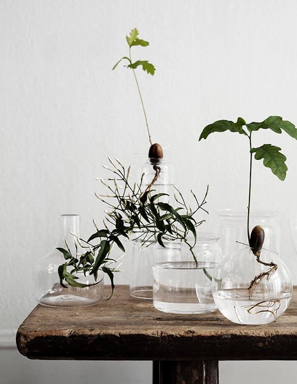 hidroponski-uzgoj-biljaka-3