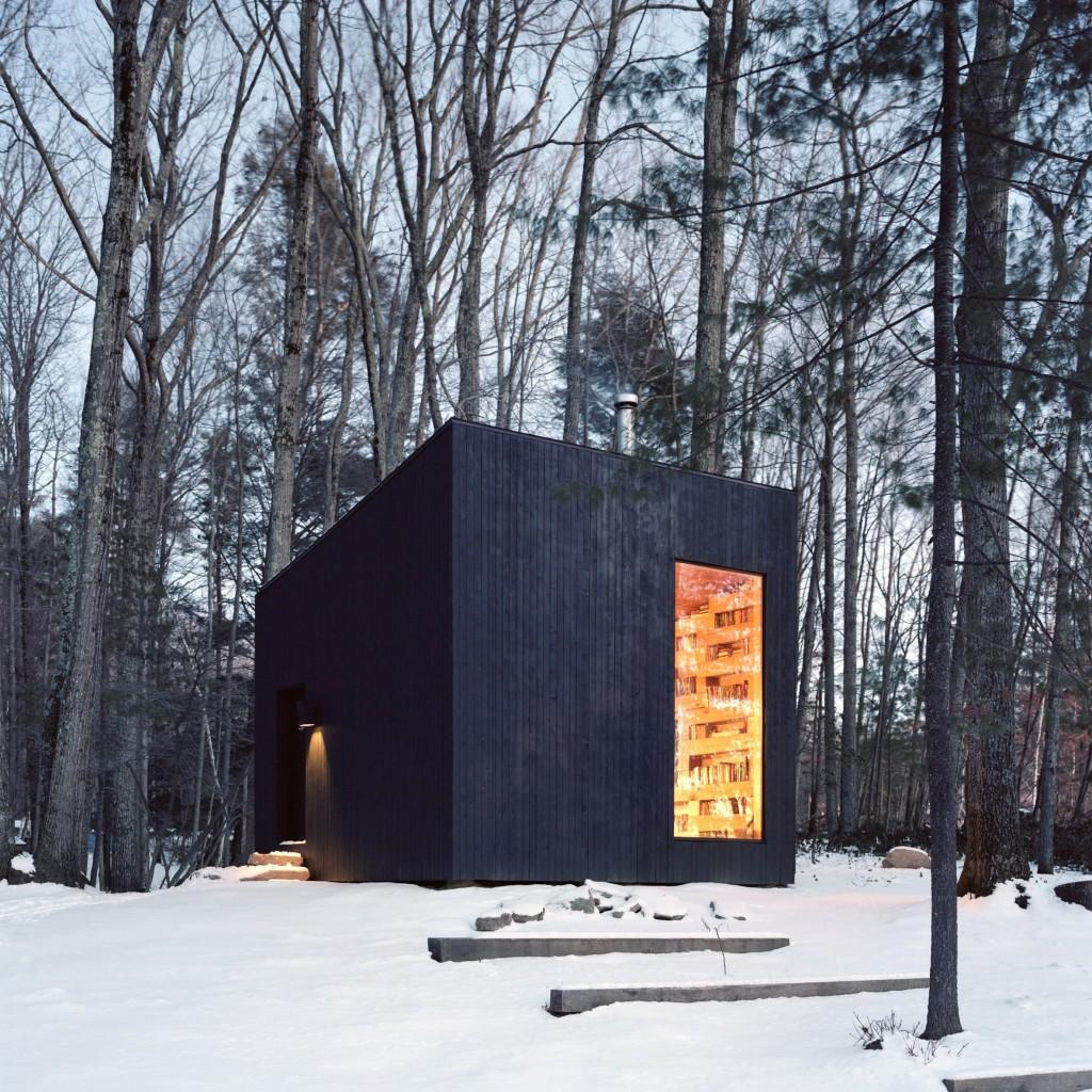 ugljenisano drvo