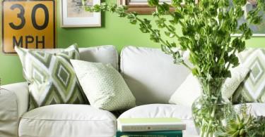 zelena-u-dnevnoj-sobi