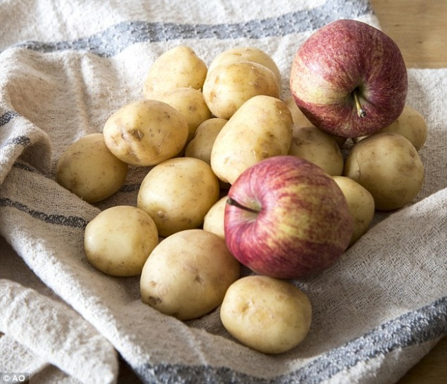jabuke krompir