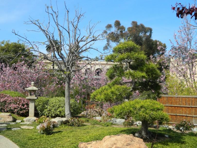 martovski radovi u vrtu