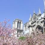 Neodoljive fotografije: Proljeće i arhitektura se ljube