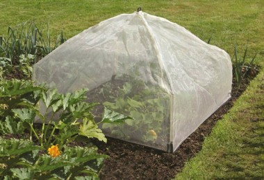 Zaštitite biljke od mraza