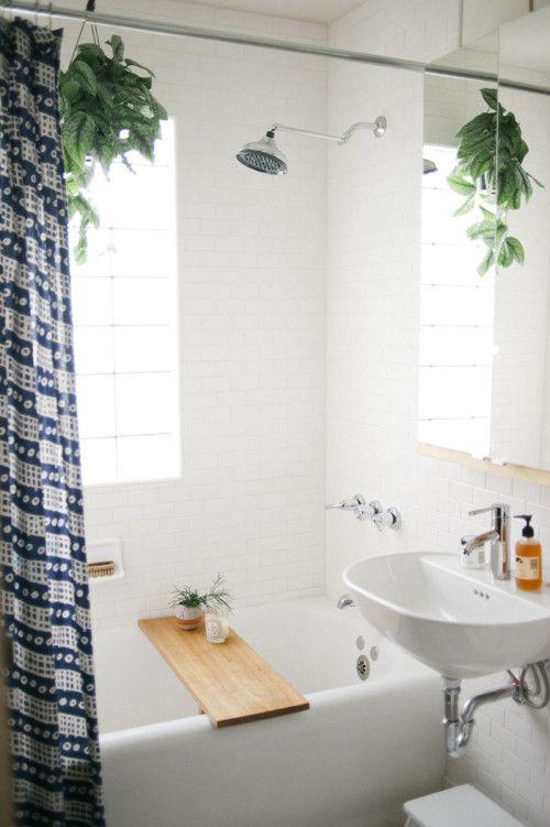 biljke pogodne za kupatilo