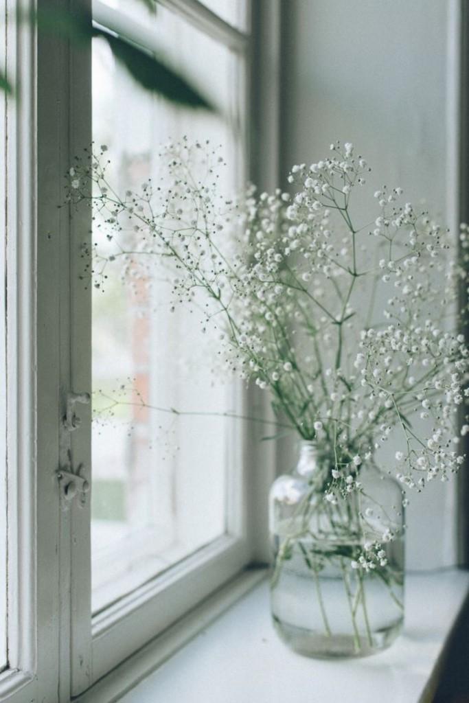 cvijeceu domu