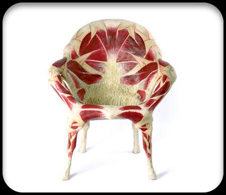 ljudsko tijelo stolica