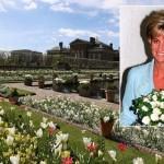 Pogledajte kako izgleda Bijela bašta otvorena u čast princeze Diane