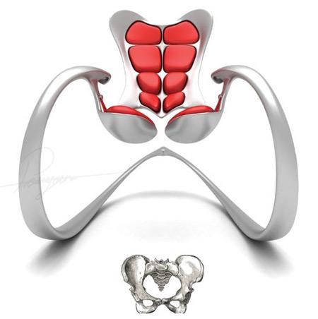 skeleton stolica