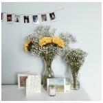 Za lijep proljećni buket dovoljno vam je ovo pristupačno cvijeće