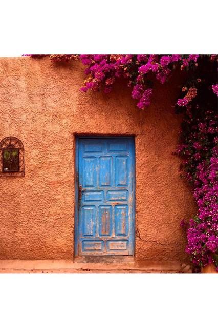 brazilian-door-7-house-25oct16-instagram-houseandgardenuk_b_426x639