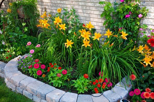 cvijece dvoriste