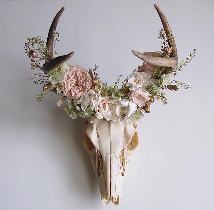dekorativne zivotinjske lobanje