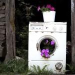 Gerila vrtlarstvo: Kad cvijeće nikne tamo gdje ne smije