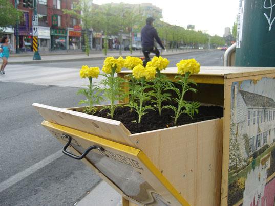 guerillagarden_planterbox2