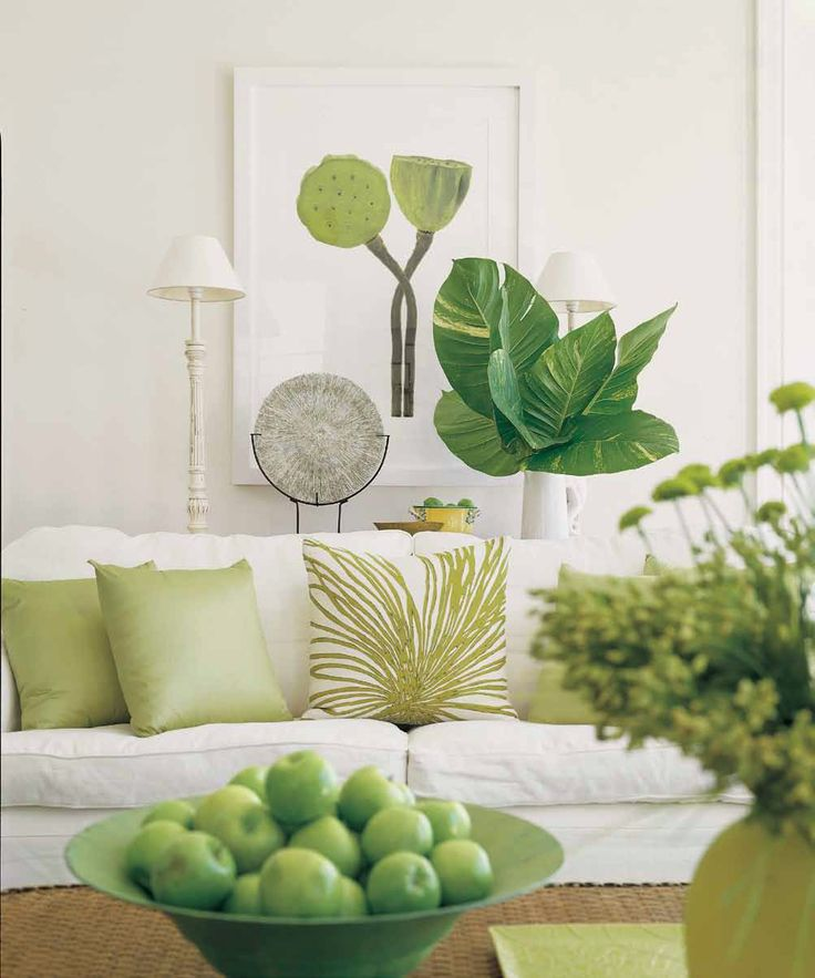 zelena uredjenje doma