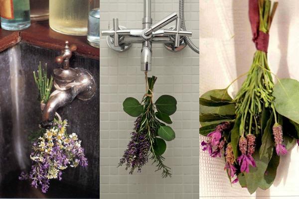 biljke u tus kabini