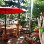 """Akcija """"Biramo najuređenije"""": Ljepote banjalučkih dvorišta"""