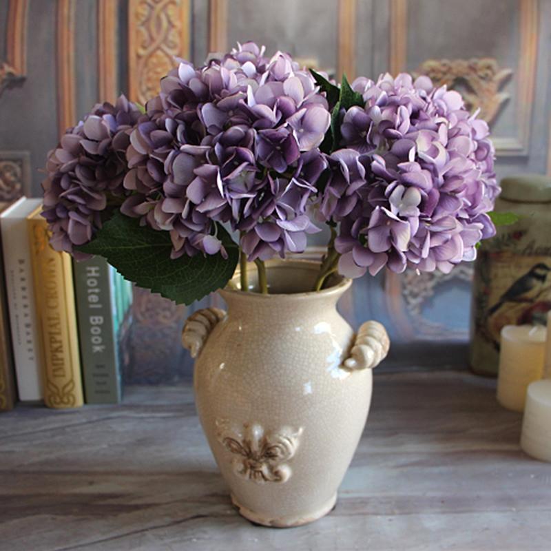 hortenzije u domu