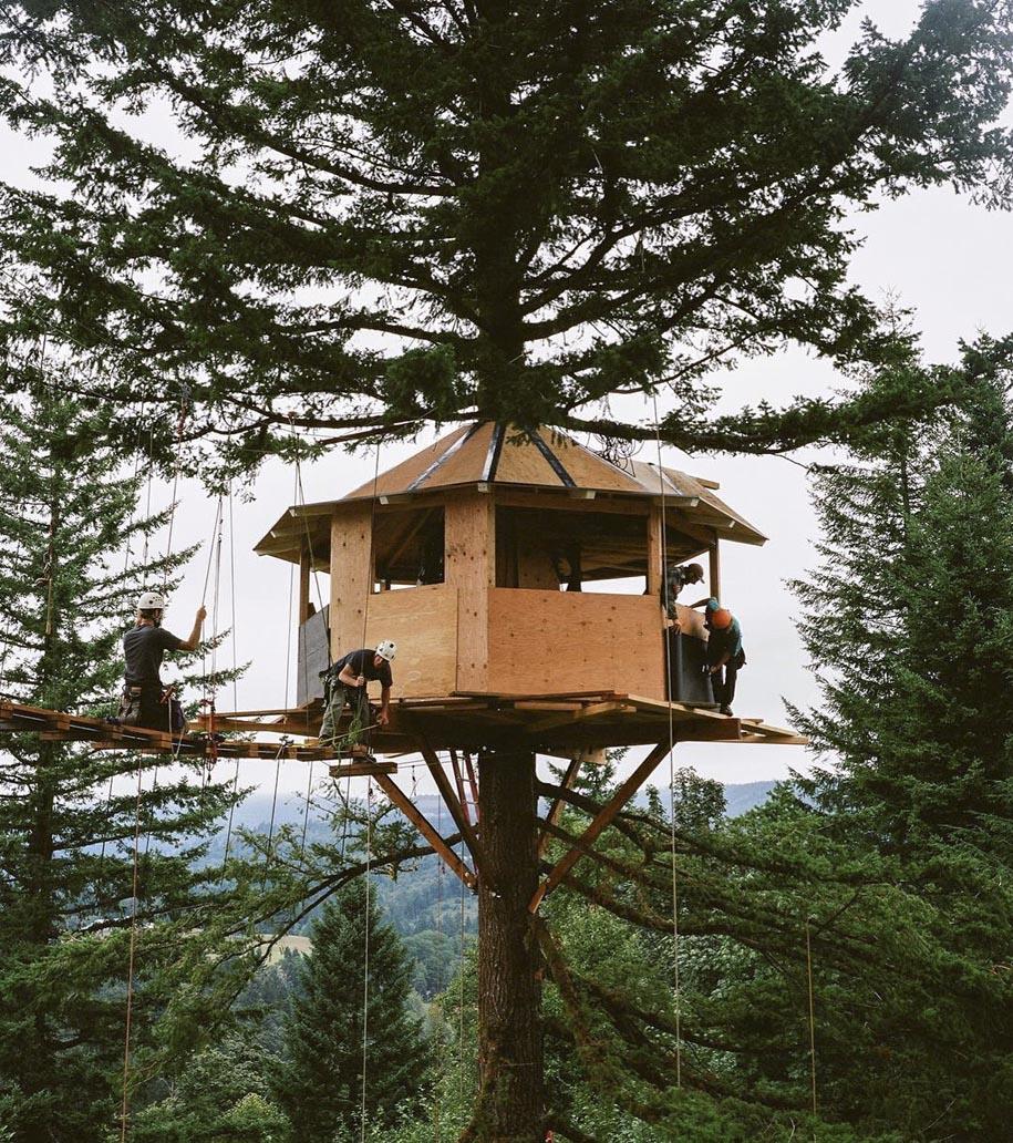 kuca na drvetu 2