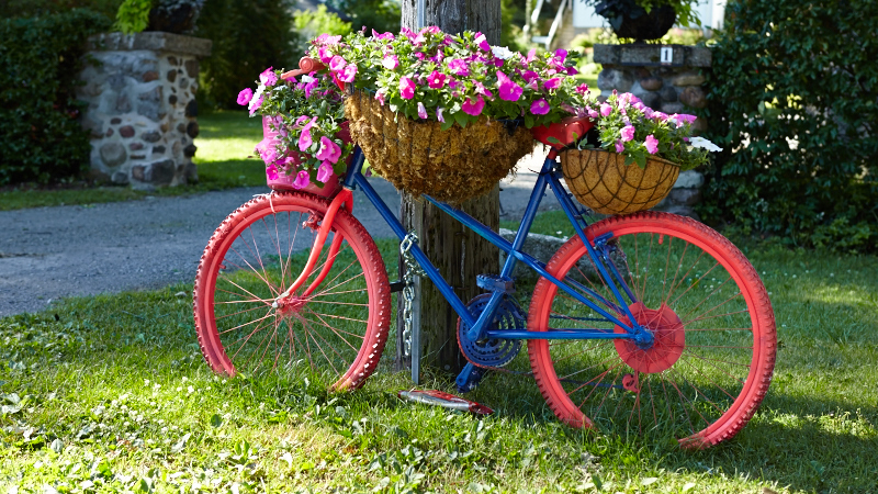 bicikl kao saksija