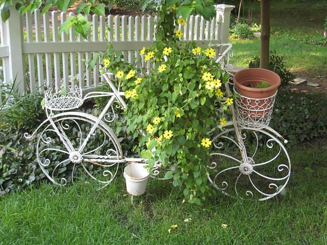 bicikl saksija