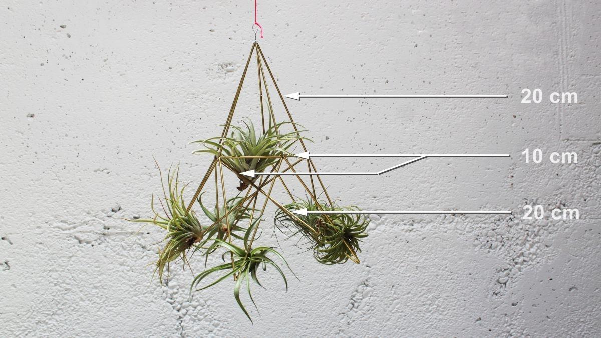 Geometrijski držač za vazdušne biljke (2)