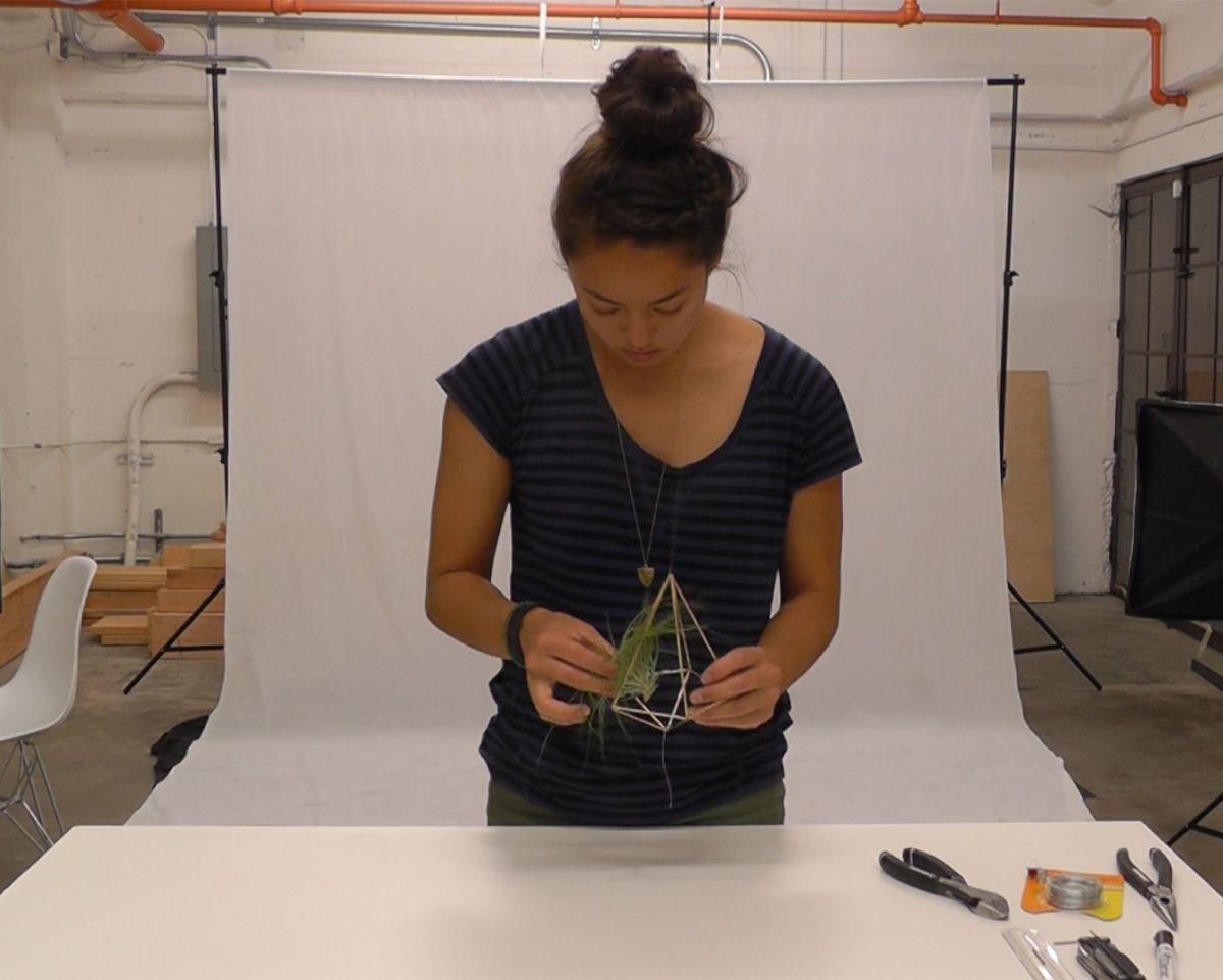 Geometrijski držač za vazdušne biljke