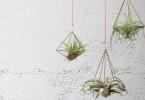 Geometrijski drzac za vazdusne biljke