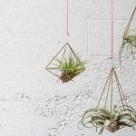 Uradi sam: Napravite elegantne držače za vazdušne biljke