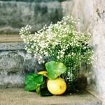 Limun je sve što vam treba za vrhunsku dekoraciju stola
