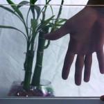 Ovo staklo od neprozirnog postaje prozirno za samo sekundu