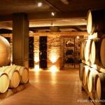 """Blistavi rezultati """"Vinarije Vukoje"""" na najvećem vinskom takmičenju na svijetu"""