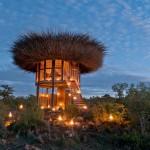 Usred divljine: Jedinstveno prenoćište u obliku gnijezda